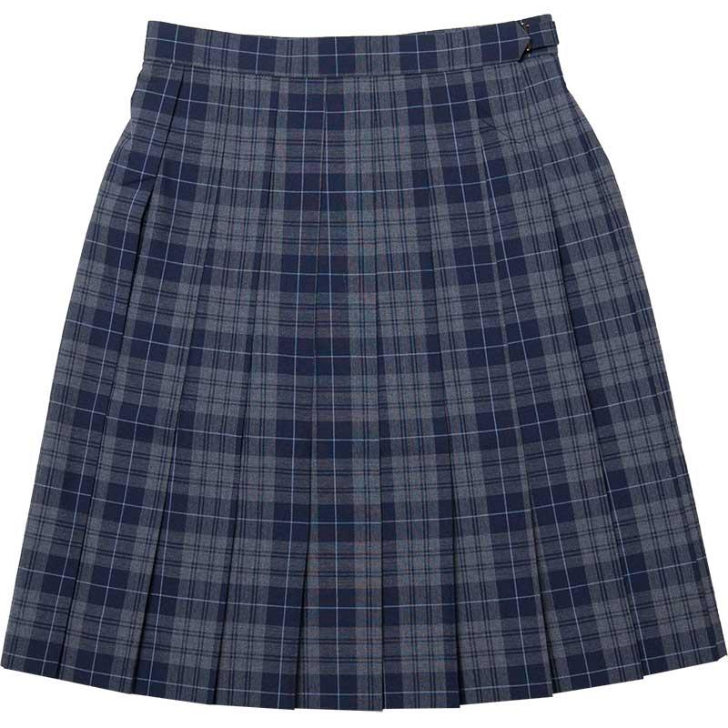 SKR277 麗しのキミ ~グレー紺サマースカート